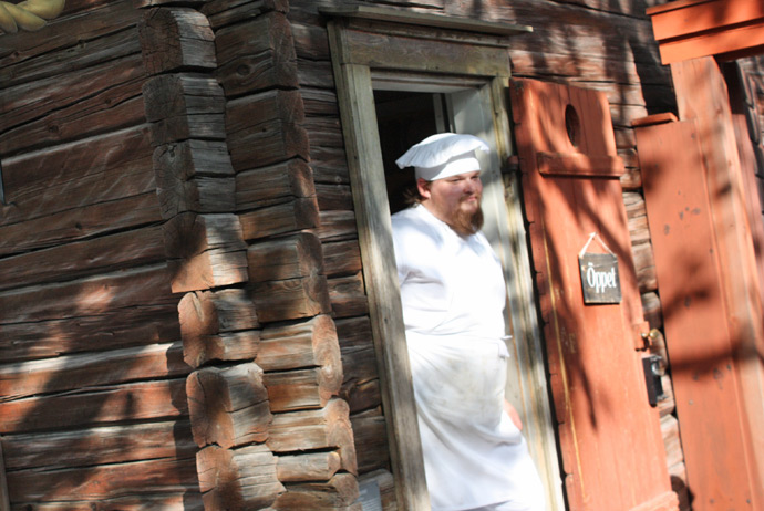 Skansen is one of the best attractions for kids in Stockholm