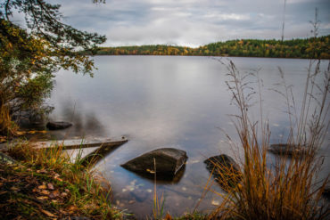 Head to Delsjön in Gothenburg for free swims