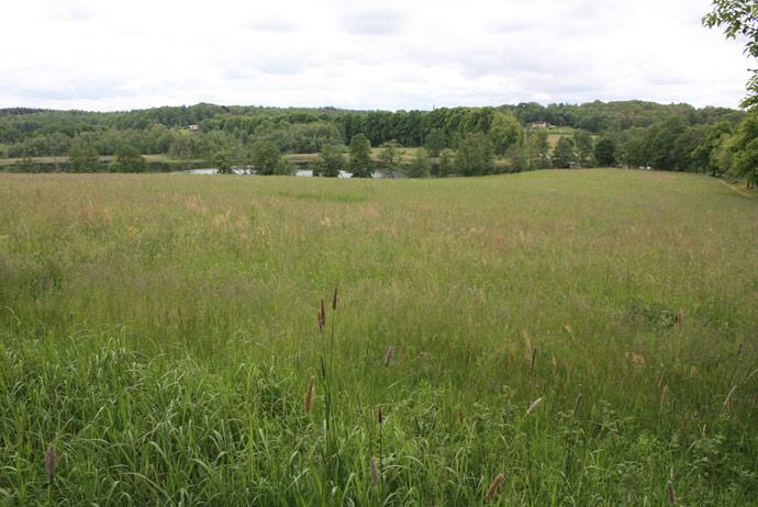 The countryside near Nääs Slott