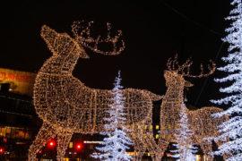 Ideas for spending Christmas in Sweden