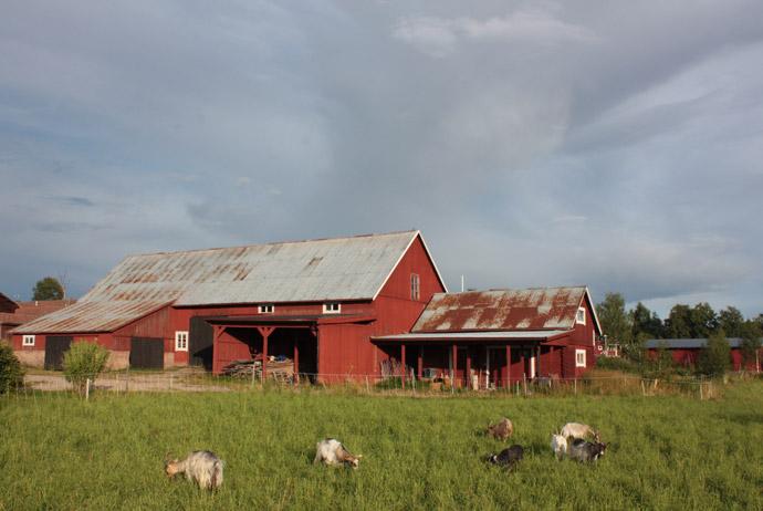 Dalarna is a popular destination for Swedes