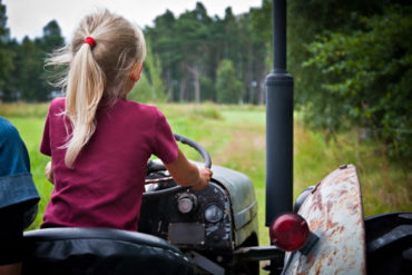 WWOOfing is a great way to see Sweden on a budget