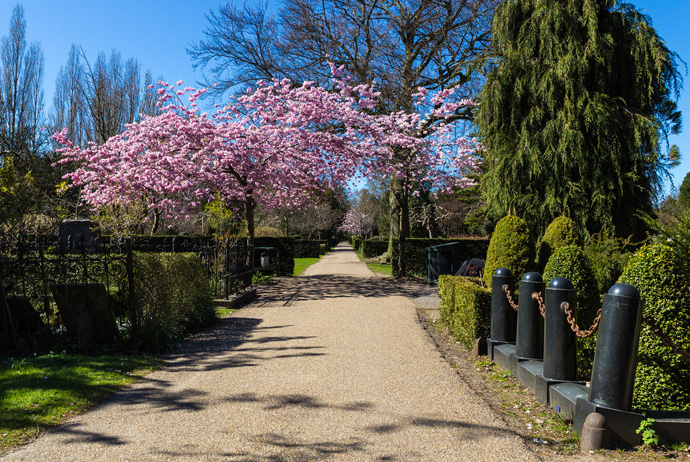 Assistens Cemetery is a great park in Copenhagen