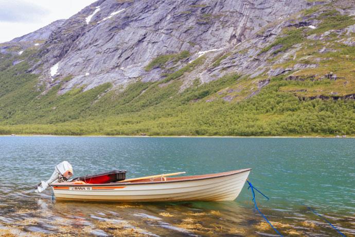 Reindeer herds in Norway