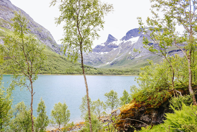 The fjord near Fauske, Norway