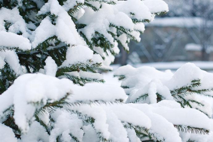 Christmas in Norway
