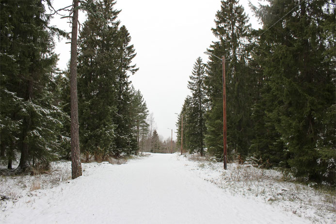 One of the ski trails near Oslo