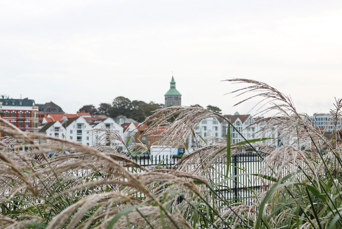What to see in Stavanger