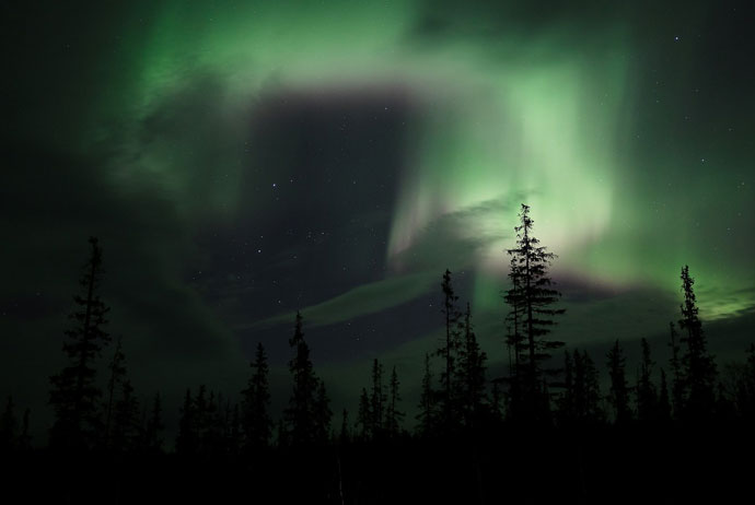 You can combine seeing the northern lights with a nice nature tour
