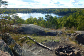 Nacka Nature Reserve offers great hiking near Stockholm