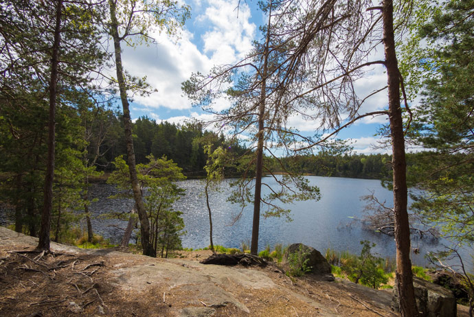 Tyresta National Park is a good place for hiking near Stockholm