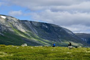 The Dovrefjell-Sunndalsfjella national park is one of Norway's most beautiful areas