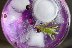 Gin Tonic Festival, Aarhus @ Aarhus | Aarhus | Denmark