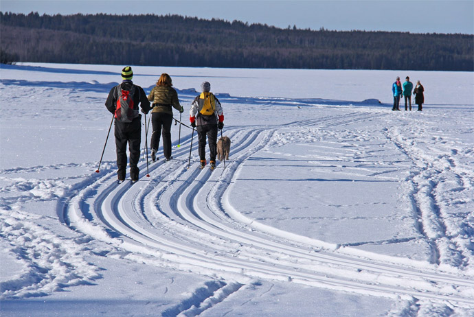 Dalarna is a good winter sports destination