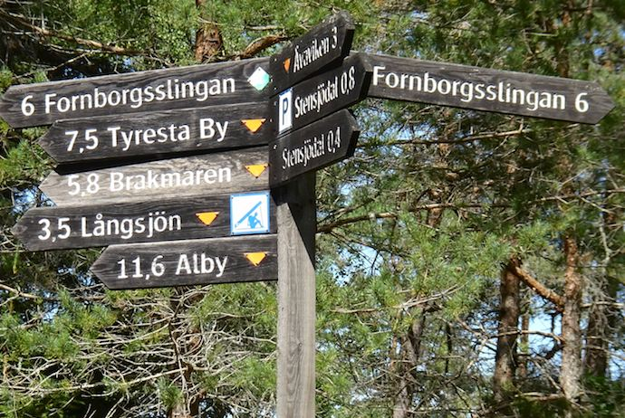 You may spot deer and hares at Tyresta National Park near Stockholm
