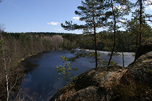 Nuuksio National Park Half-Day Trip from Helsinki