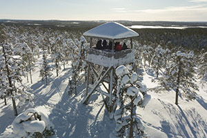Wilderness Tour in Rovaniemi