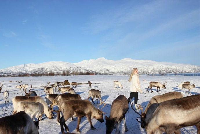 Try this Sami cultural tour in Norway