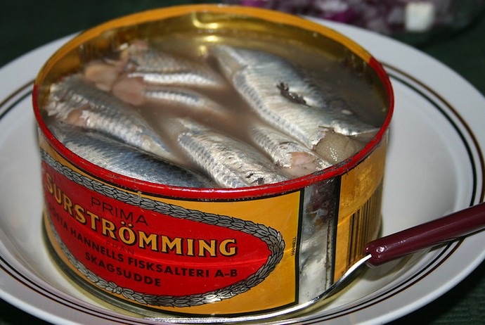 Surströmming, fermented herring from Sweden