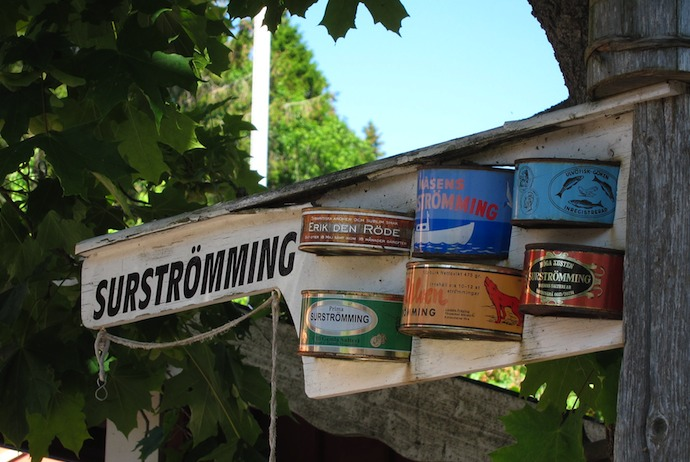 Surströmming is a speciality of northern Sweden