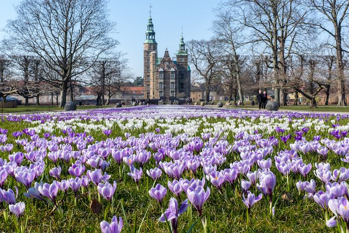 Spring in the Kongens Have park, Copenhagen