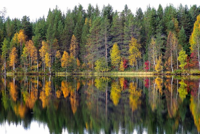 Finland in autumn