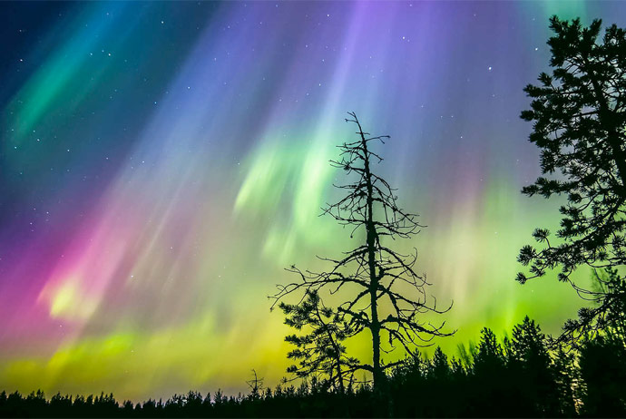 You can see the northern lights for free in Swedish Lapland