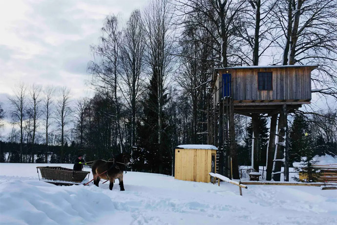 This rustic treehouse is one of the more unusual Airbnbs in Scandinavia