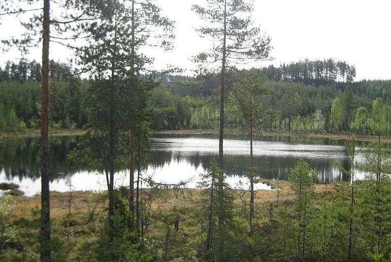 The Finnskogleden trail, one of Norway's best long-distance trials