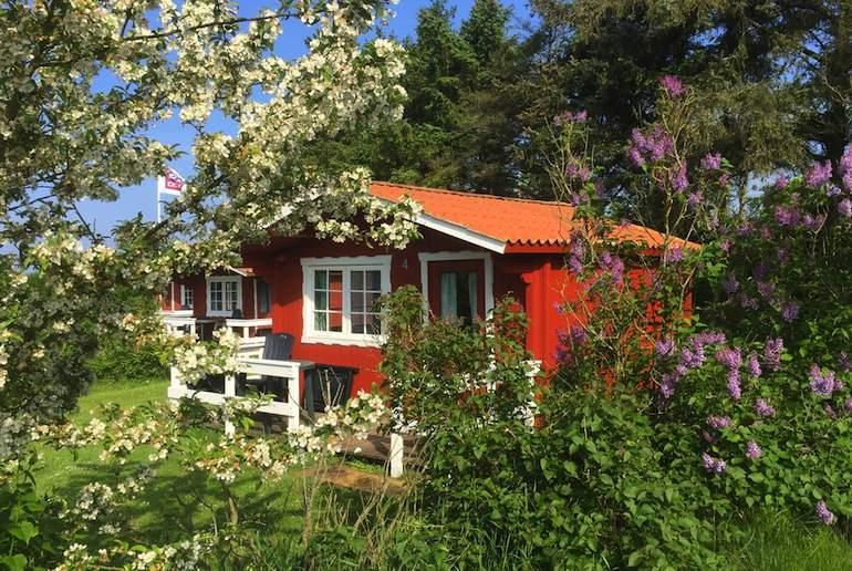 Ballum Camping, one of Denmark's special campsite