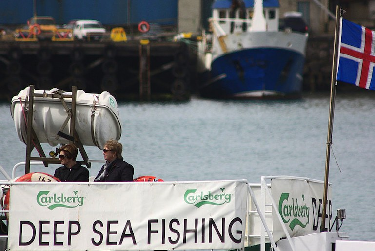Go fishing with the experts from Reykjavík