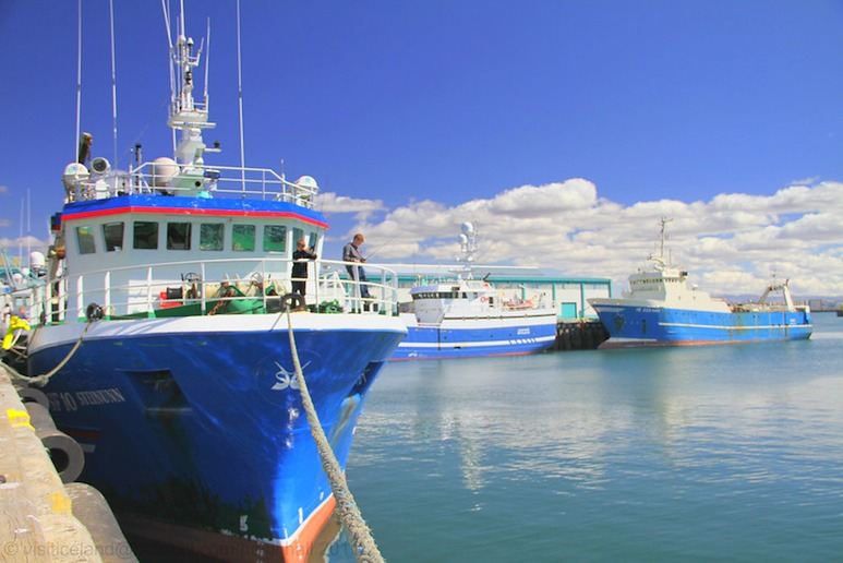 Most boat trips leave from Reykjavík's old harbour