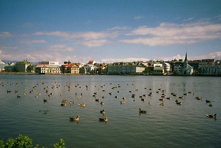 Go bird-watching at Reykjavík's Tjornin lake – it's one of the 40 best free and cheap things to do in the city.