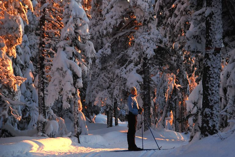 Go cross-country skiing in the Nordmarka Forest just outside Oslo in winter