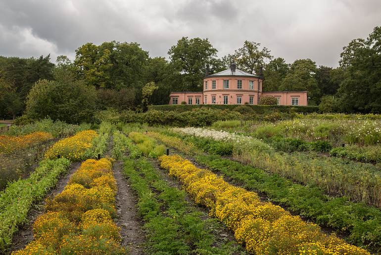 Get back to nature in Stockholm at the Rosendals Trädgård