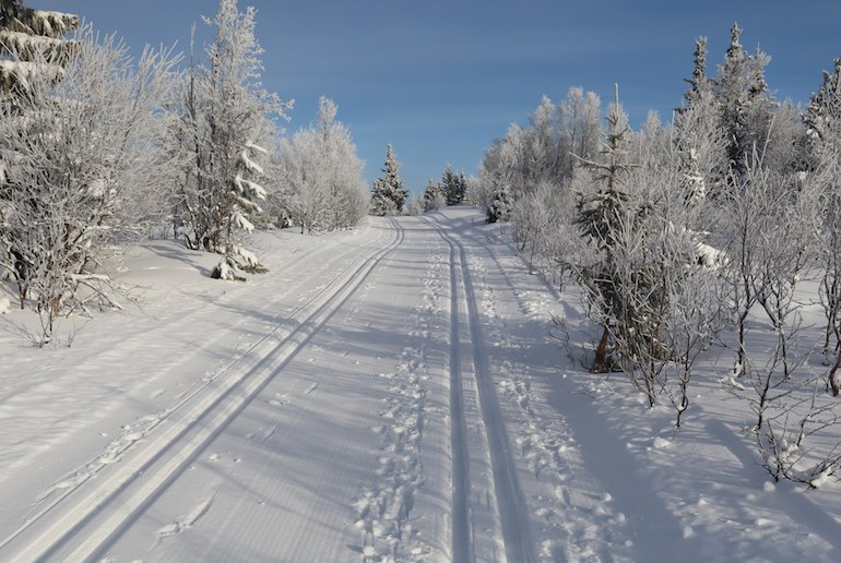 Plan your cross-country skiing holiday in Norway
