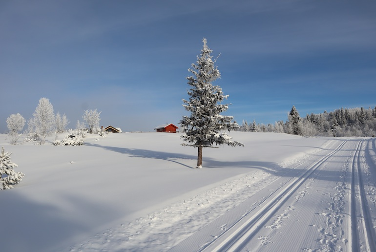 We uncover the best places for cross-country skiing in Norway