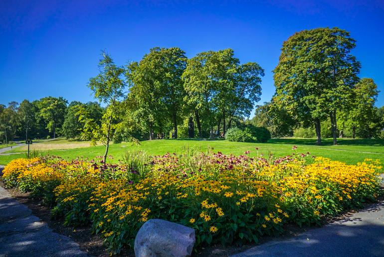Stockholm's parks are a great way to get back to nature