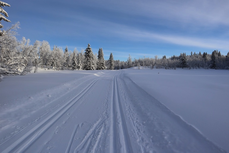 Discover the best resorts in Norway for cross-country skiing